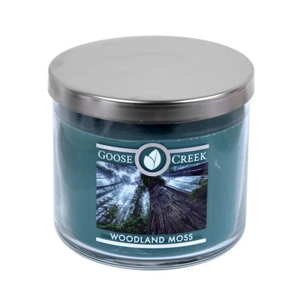 Świeczka zapachowa w szklanym pojemniku Goose Creek Woodland Moss, 35 godz. palenia