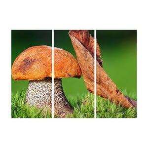 3dílný obraz Podzimní přátelství