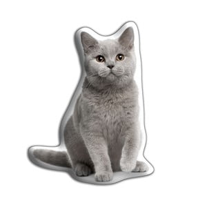 Pernă Adorable Cushions British Shorthair