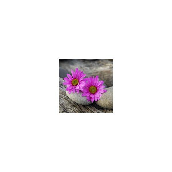 Set obrazů na skle Kvítí I, 20x20 cm, 2 ks
