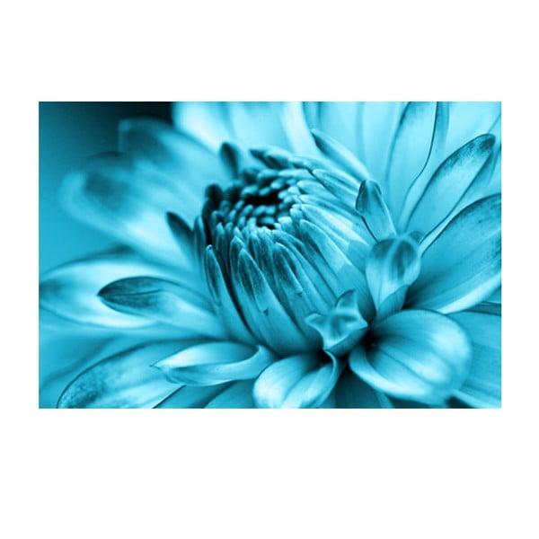 Obraz na skle Modrá květina, 40x60 cm