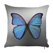 Față de pernă Apolena Mariposa, 43 x 43 cm