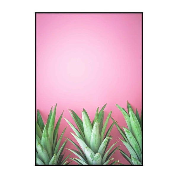 Plakát Imagioo Three Pineapples, 40x30cm