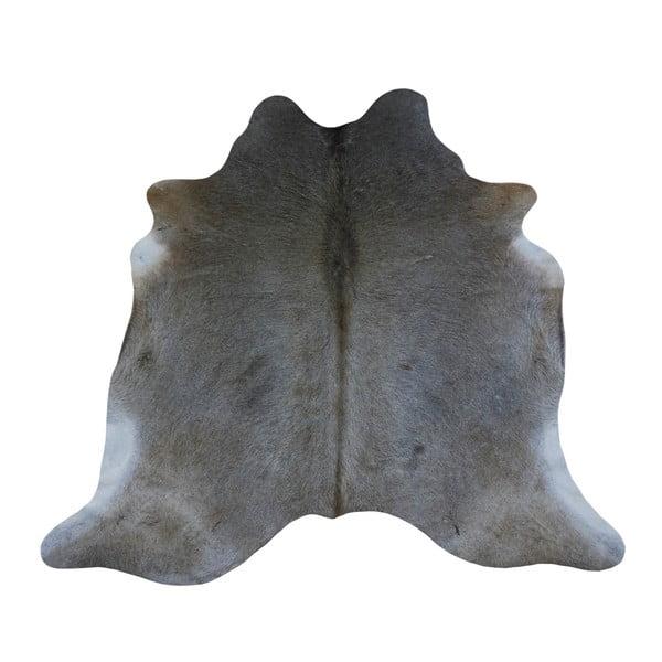 Šedý koberec z hovězí kůže, 196 x 194 cm