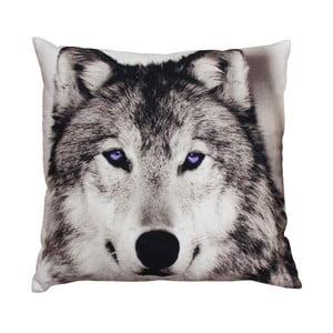 Polštář ZOO Wolf, 45x45 cm