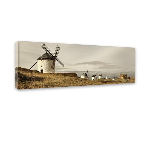 Obraz Styler Canvas Harmony Field, 45 x 140 cm