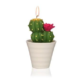 Lumânare decorativă în formă de cactus Versa Cactus Fila de la Versa