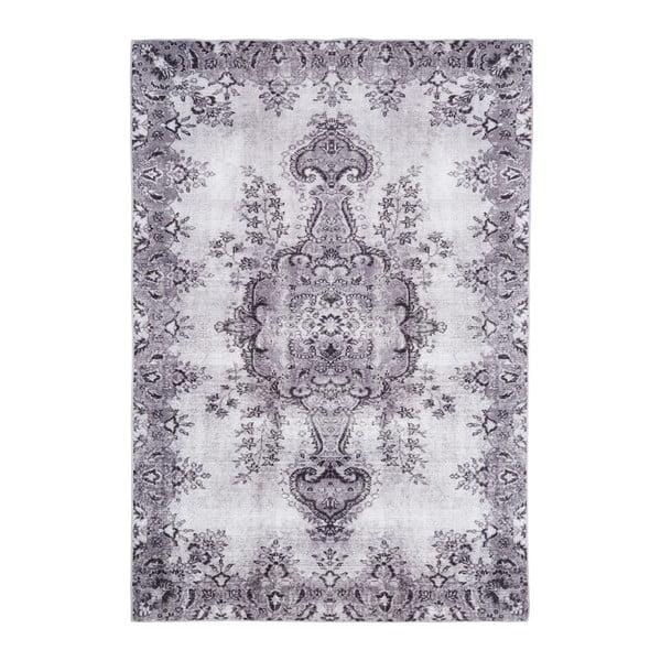 Světle šedý koberec Floorita Jasmine, 200 x 290 cm