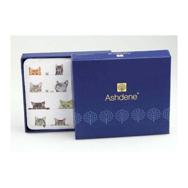 Sada 6 podtácků Ashdene Peeping Felines
