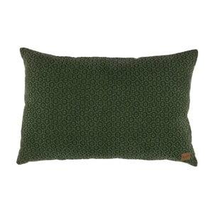 Zelený bavlněný polštář De Eekhoorn Flatter, 40x60cm