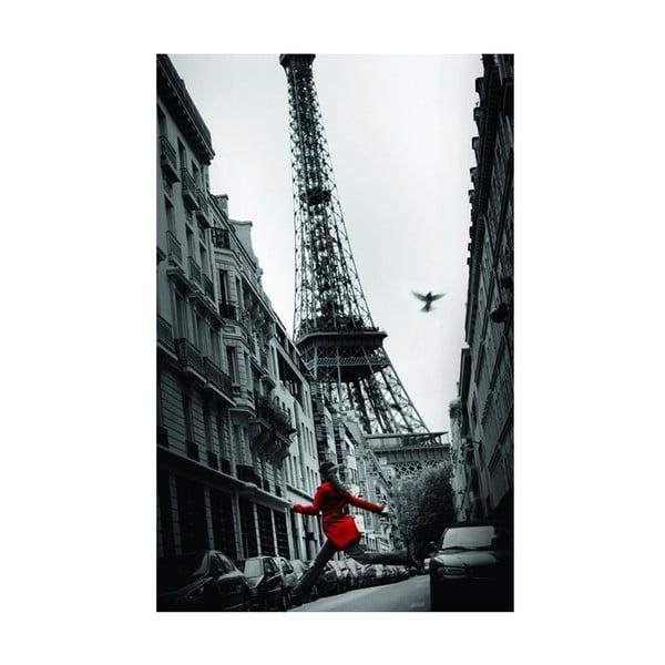 Fotoobraz Paříž, 51x81 cm
