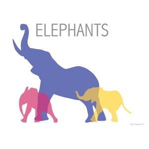 Plakát Sloni