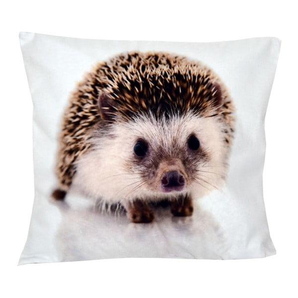 Polštář Animals Hedgehog, 42x42 cm