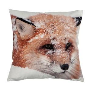 Polštář Fox Velvet, 45x45 cm