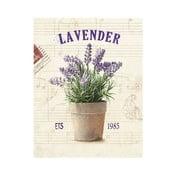 Obraz na plátně Lavender 1985