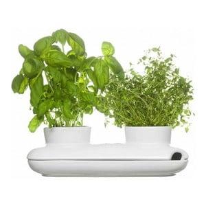 Ghiveci pentru plante Duo Herb
