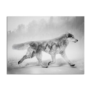 Tablou Styler Canvas Nordic Wolf, 75 x 100 cm de la Styler