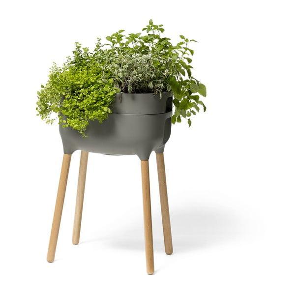 Vas pentru cultivarea plantelor Plastia High Urbalive, înălțime 77 cm, gri