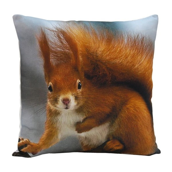 Polštář Squirrel Ginger, 45x45 cm