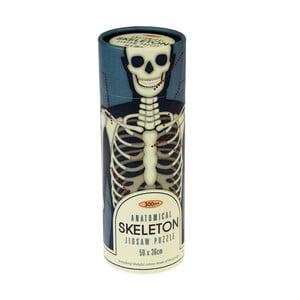 Puzzle vtubě Rex London Anatomical Skeleton