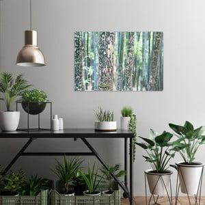 Obraz na plátně OrangeWallz Bamboo, 60 x 90 cm