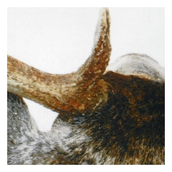 Polštář Deer Back 50x50 cm