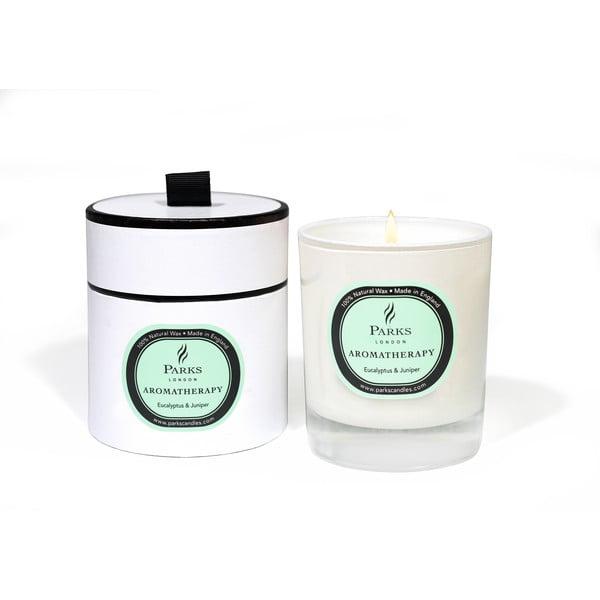 Lumânare parfumată Parks Candles London Aromatherapy, aromă de eucalipt și ienupăr, 50 ore