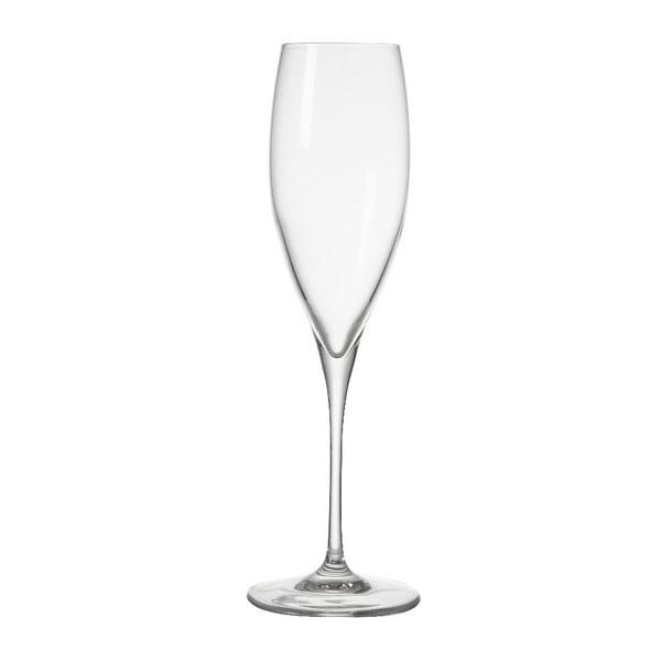 Sklenička na šampaňské Brandani Oblio