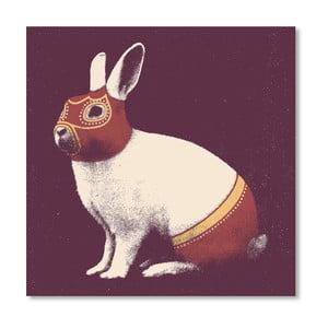 Plakát Rabbit Wrestler od Florenta Bodart, 30x30 cm