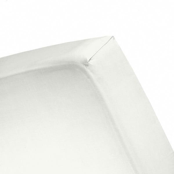 Prostěradlo Cinderella Ivory, 160x200 cm