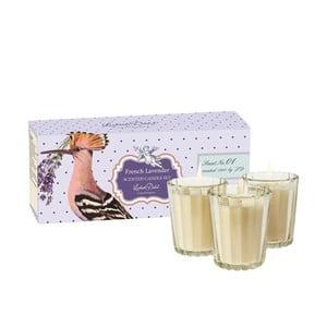 Sada 3 vonných svíček French Lavender od Lisbeth Dahl
