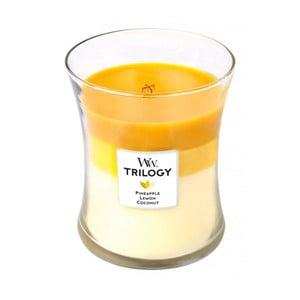 Svíčka s vůní ananasu, citrusů a kokosu WoodWick Trilogy Plody léta, dobahoření60hodin