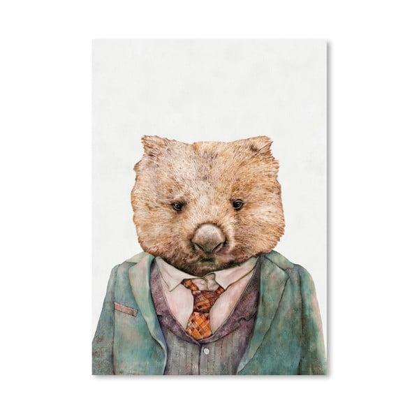 Plakát Wombat, 42x60 cm