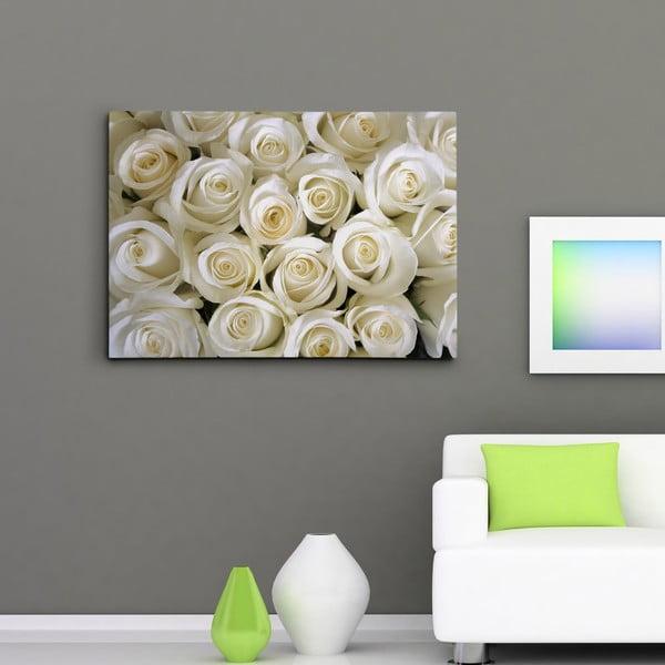 Obraz na plátně Bílé růže, 50x70 cm