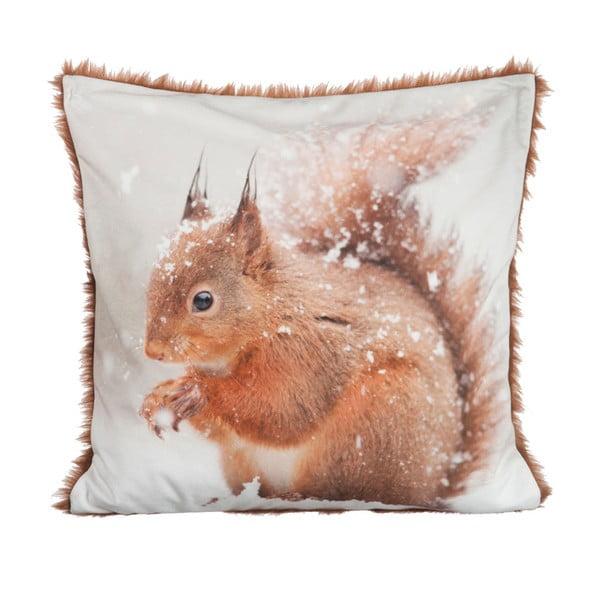 Polštář Squirrel Velvet, 45x45 cm