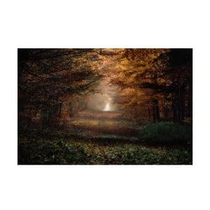 Obraz Podzim, 40x60 cm