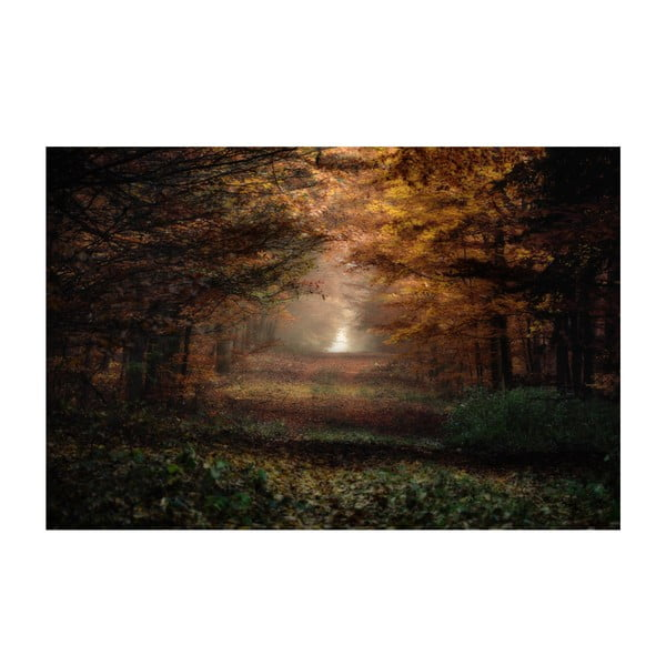 Obraz Podzim, 60x80 cm