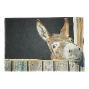Předložka Donkey 75x50 cm