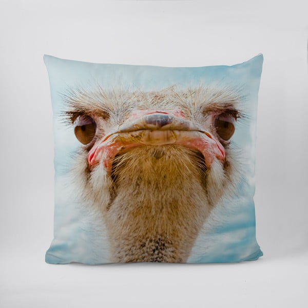Polštář Curious Ostrich