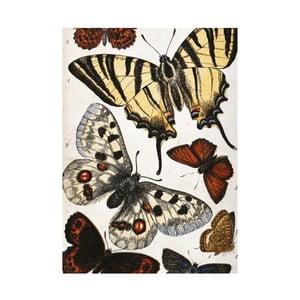 Prosop de bucătărie Jay Biologica Butterflies