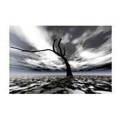 Obraz Abstraktní strom, 60x80 cm