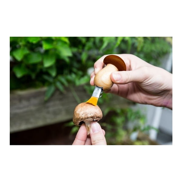 Set nožíku a štětce na houby jako přívěsek na klíče Kikkerland Mushroom
