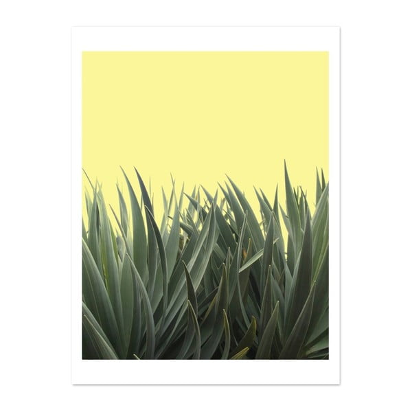Plakát HF Living Botanic Hide, 30 x 40 cm