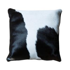 Pernă din piele Pipsa Black & White, 45 x 45 cm