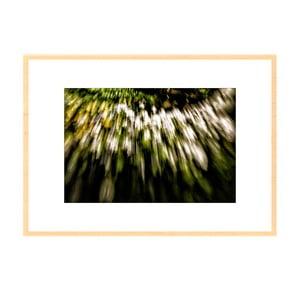 Rychlost, autorská fotografie Borise Stojanova (přírodní olšový rám)