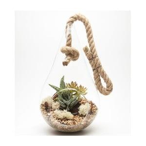 Závěsné terárium s rostlinami Urban Botanist Tear Drop