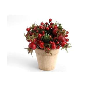 Květináč s červenými bobulemi