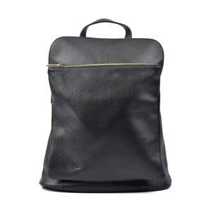 Černý kožený batoh Isabella Rhea Hurto
