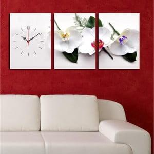 Obrazové hodiny Bílé orchideje