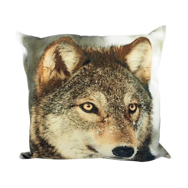 Polštář Winter Wolf in Snow 50x50 cm